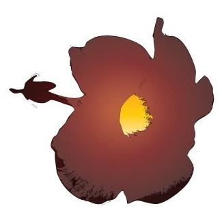 Cayena roja Luis Poleo gráfica