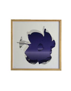 Cayena púrpura Luis Poleo