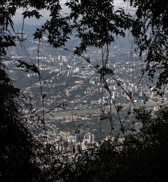 Henry González Caracas y el bosque nublado El Ávila