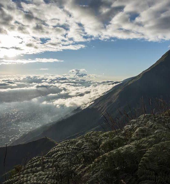 Henry González Caracas y el pico Oriental