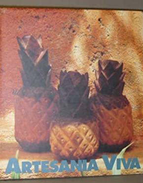 Libro Artesanía viva