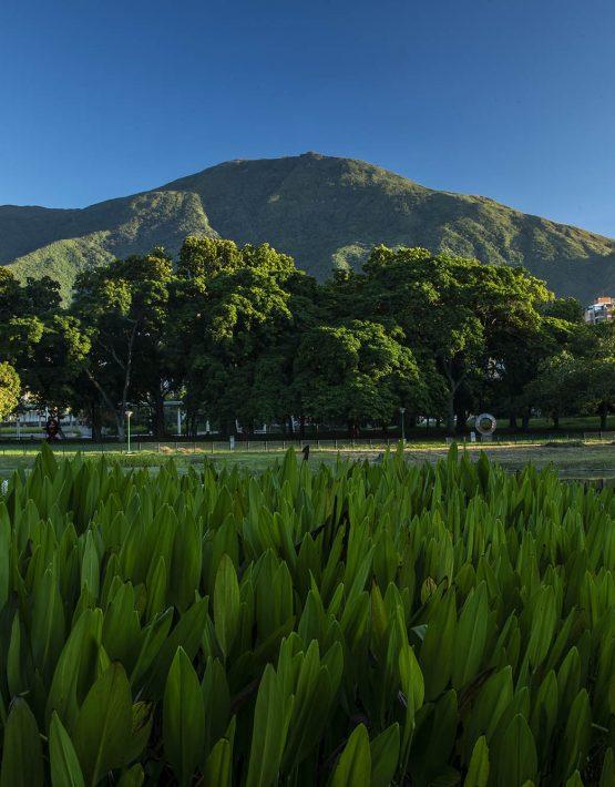 Ávila desde el Parque del Este 3